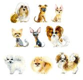Cartoon small dogs. Watercolor hand drawn illustration royalty free illustration