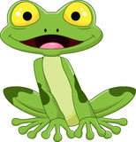 Cartoon smile frog Stock Photos