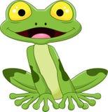 Cartoon smile frog Stock Photos