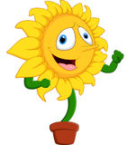 Cartoon smile sunflower Royalty Free Stock Images