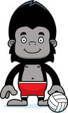 Cartoon Smiling Beach Volleyball Player Gorilla Royalty Free Stock Image