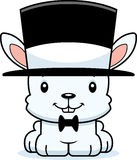 Cartoon Smiling Bunny Top Hat Stock Photo