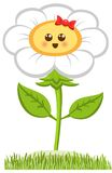 Cartoon Smiling Champmille, Happy Daisy Isolated On White. Vector Illustration Stock Images