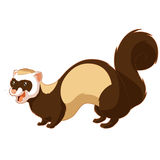Cartoon smiling ferret Royalty Free Stock Images