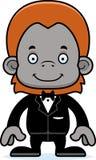 Cartoon Smiling Groom Orangutan Royalty Free Stock Photos