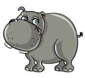 Cartoon smiling hippo Stock Photos