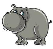 Cartoon smiling hippo. Isolated on white Stock Photos