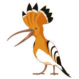 Cartoon  smiling Hoopoe. Vector image of the Cartoon  smiling Hoopoe Stock Photo