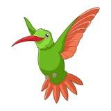 Cartoon smiling Hummingbird Stock Image