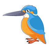 Cartoon smiling Kingfisher. Vector image of the Cartoon smiling Kingfisher Royalty Free Stock Photography
