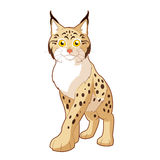 Cartoon smiling Lynx Royalty Free Stock Images