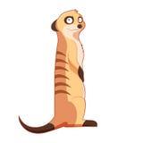 Cartoon smiling Meercat Stock Photos