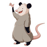 Cartoon smiling Opossum. Vector image of the  Cartoon smiling Opossum Stock Photography