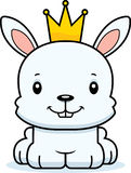 Cartoon Smiling Prince Bunny Royalty Free Stock Photography