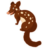Cartoon smiling Quoll Royalty Free Stock Photography