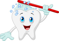 Cartoon Smiling tooth with toothbrush Stock Photos