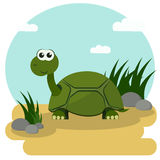 Cartoon Smiling Turtle. Cartoon turtle smiling stroll among the green grass. Vector illustration with colorful background Royalty Free Stock Image