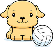 Cartoon Smiling Volleyball Player Puppy Royalty Free Stock Images