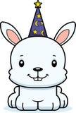Cartoon Smiling Wizard Bunny Royalty Free Stock Photo