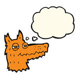 Cartoon smug fox face with thought bubble Stock Image