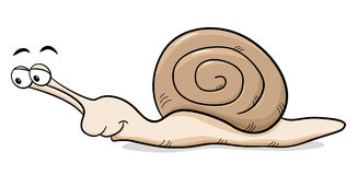 Cartoon snail with snail shell Royalty Free Stock Images