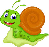Cartoon snail for you design Stock Photos