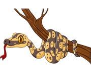 Cartoon snake on a tree branch Stock Photo