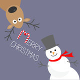 Cartoon Snowman and deer. Violet background. Candy cane. Merry Christmas card. Flat design Royalty Free Stock Image