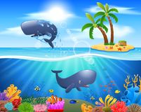 Cartoon sperm whale jumping in blue ocean. Background. illustration Stock Photos