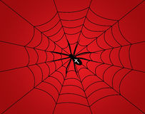 Cartoon spider Stock Photos