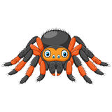 Cartoon spider tarantula with red knees. Danger animal Stock Photography
