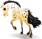 Cartoon spotted horse Royalty Free Stock Images