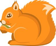 Cartoon Squirel Vector Isolated Royalty Free Stock Photography