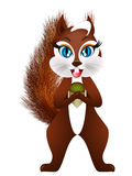 Cartoon squirrel with an acorn. Stock Photo