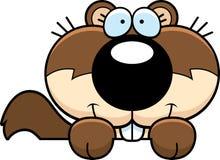 Cartoon Squirrel Peeking Royalty Free Stock Photos