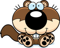 Cartoon Squirrel Sitting Stock Image