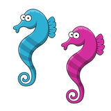 Cartoon striped blue and pink seahorse fishes Stock Photo