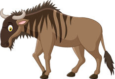 Cartoon Strong animals wildebeest Stock Photos
