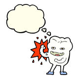 cartoon strong healthy tooth with thought bubble Royalty Free Stock Photos