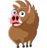 Cartoon strong wild boar Stock Photos