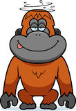 Cartoon Stupid Orangutan Royalty Free Stock Photo