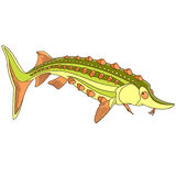 Cartoon sturgeon fish Stock Photography