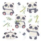 cartoon style cute panda set vector illustration