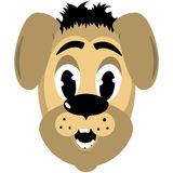 Cartoon style dog head. Cartoon style broun dog head Royalty Free Stock Image