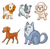 Cartoon style dogs set. Adult dogs and puppies of different breeds. Colorful illustration for perfect card or any kind of design. Isolated on white background Stock Photos