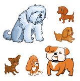 Cartoon style dogs set. Adult dogs and puppies of different breeds. Colorful illustration for perfect card or any kind of design.  on white background Royalty Free Stock Photography