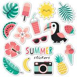 Set of colorful tropical summer stickers toucan blush mint royalty free illustration