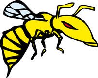 Cartoon-style wasp. A bright yellow illustration of a cartoon-style wasp Stock Images