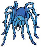 Cartoon stylized blue tarantula spider Stock Photos