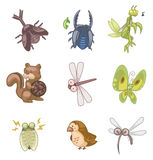 Cartoon summer animal icon. Vector drawing Royalty Free Stock Photos